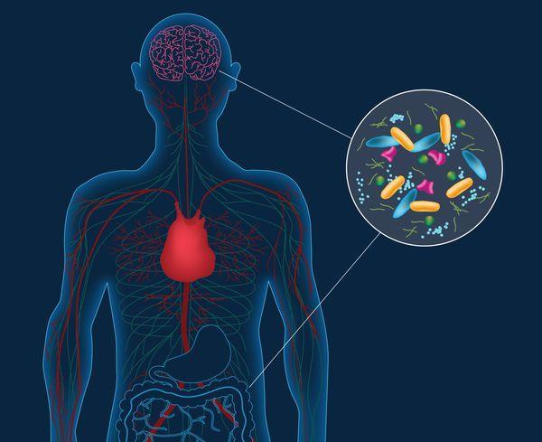 Parkinson hastalığının nedeni bağırsak mikrobu mu?