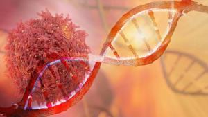 Kanser tedavisinde hücresel değişimlere göre tedavi farklılaşıyor