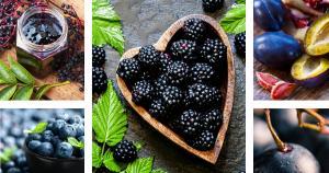 Sayısız faydalarıyla mavi-mor renkli 5 yaz meyvesi!